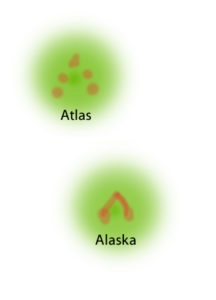 Individuelle Kopfzeichnungen Phelsuma Grandis
